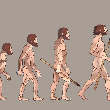 Evolution and Cognition
