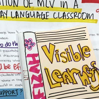 Making Learning Visible: The Power of Group Learning and Documentation in Classrooms and Communities